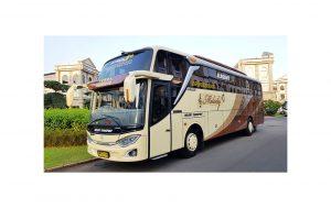 3 alasan Menggunakan Jasa Sewa Bus Pariwisata